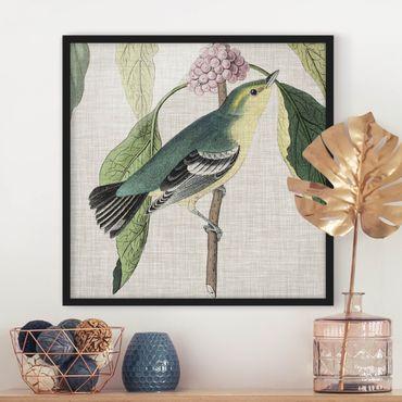 Poster con cornice - Bird On Linen Pink I - Quadrato 1:1
