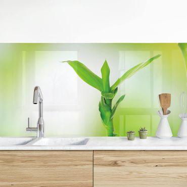 Rivestimento cucina - Bambù Verde