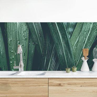 Rivestimento cucina - Foglie Di Palma Verde