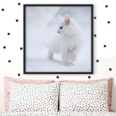 Poster con cornice - White As Snow - Quadrato 1:1