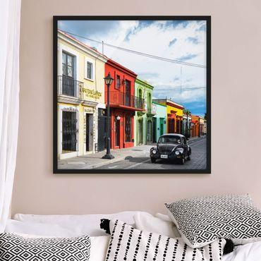 Poster con cornice - Colorful Facades Black Beetle - Quadrato 1:1