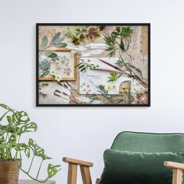 Poster con cornice - Flowers And Garden Herbs Vintage - Orizzontale 3:4