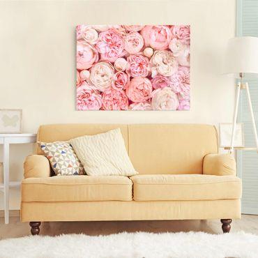 Quadro in vetro - Rose Rose Coral Shabby - Orizzontale 3:4