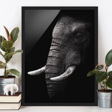 Poster con cornice - Scuro Elephant Portrait - Verticale 4:3