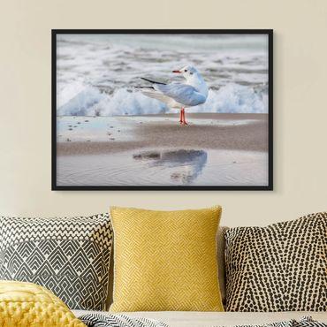 Poster con cornice - Gabbiano Sulla Spiaggia Di Fronte Al Mare - Orizzontale 3:4