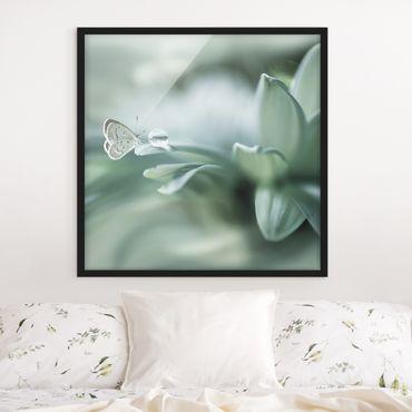 Poster con cornice - Farfalla E Gocce di rugiada In Pastel Verde - Quadrato 1:1