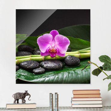 Quadro in vetro - Green Bamboo Con L'orchidea Blossom - Quadrato 1:1