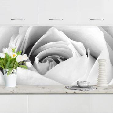 Rivestimento cucina - Close Up Rose