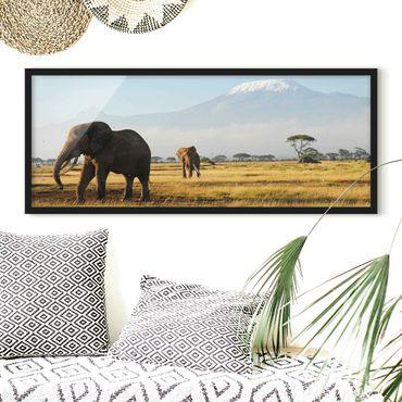 Poster con cornice - Elefanti Davanti Al Kilimanjaro In Kenya - Panorama formato orizzontale