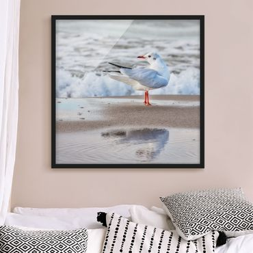 Poster con cornice - Gabbiano Sulla Spiaggia Di Fronte Al Mare - Quadrato 1:1