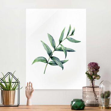 Quadro in vetro - Eucalipto in acquerello I