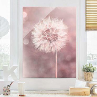 Quadro in vetro - Dandelion rosa bokeh - Verticale 4:3