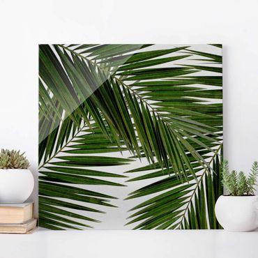 Quadro in vetro - Scorcio tra foglie di palme verdi