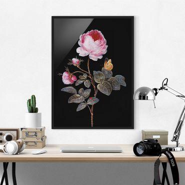 Poster con cornice - Barbara Regina Dietzsch - The Hundred-Rose - Verticale 4:3