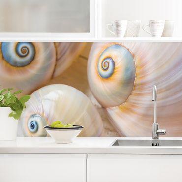 Rivestimento cucina - Trio di bivalvi su legno