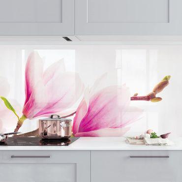 Rivestimento cucina - Magnolia Delicata