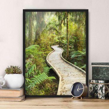 Poster con cornice - Path In The Jungle - Verticale 4:3