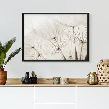 Poster con cornice - Gentle Grasses - Orizzontale 3:4