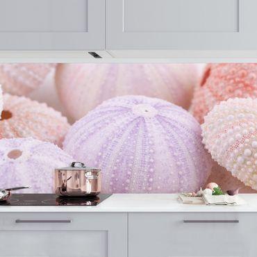 Rivestimento cucina - Riccio di mare in pastello