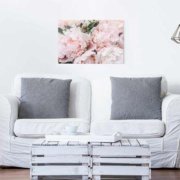 Quadro in vetro - Peonie rosa chiaro - Orizzontale 2:3