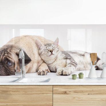 Rivestimento cucina - Migliori Amici