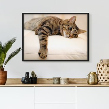 Poster con cornice - Cat Chill Out - Orizzontale 3:4