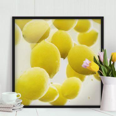 Poster con cornice - Lemon In The Water - Quadrato 1:1