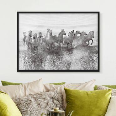 Poster con cornice - White Horses In The Sea - Orizzontale 3:4