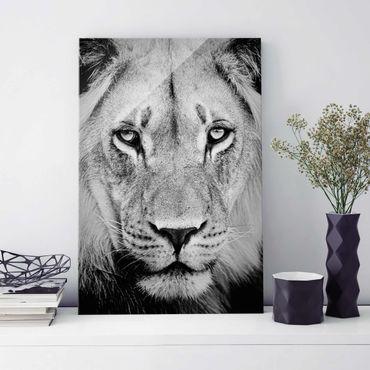 Quadro in vetro - Old lion - Verticale 2:3