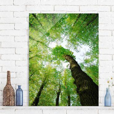 Quadro in vetro - Trees of life - Verticale 3:4