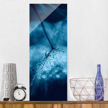 Quadro in vetro - Tarassaco Blu In The Rain - Pannello