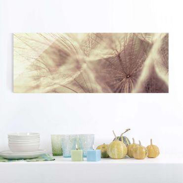 Quadro in vetro - Detailed Dandelions macro shot with vintage Blur effect - Panoramico