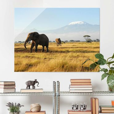 Quadro su vetro Africa - Elephants before Kilimanjaro in Kenya - Orizzontale 4:3
