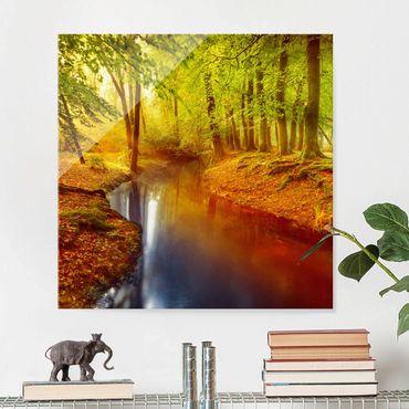 Quadro in vetro - Autumn forest - Quadrato 1:1