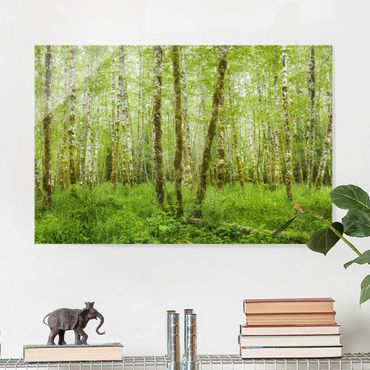 Quadro in vetro - Hoh Rain Forest In Olympic National Park - Orizzontale 3:2
