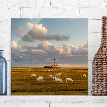 Quadro in vetro - Sea Lighthouse with sheep flock - Quadrato 1:1