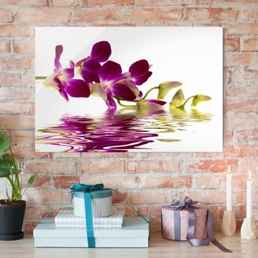 Quadro in vetro - Pink Orchid Waters - Orizzontale 3:2
