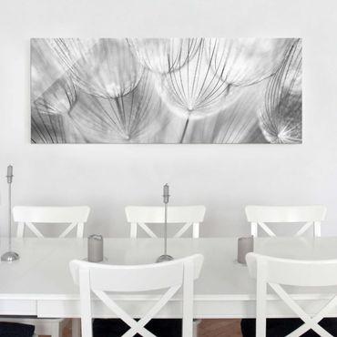Quadro in vetro - Dandelions macro shot in black and white - Panoramico