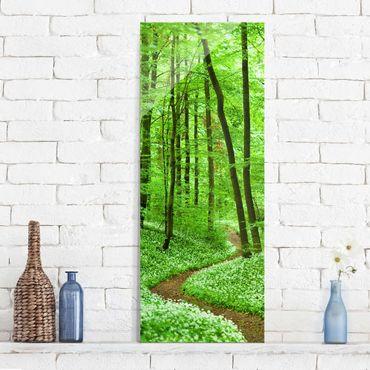 Quadro in vetro - Romantic Forest Track - Pannello