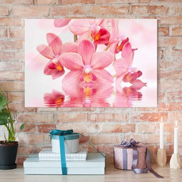Quadro in vetro - Pink Orchid on water - Orizzontale 3:2