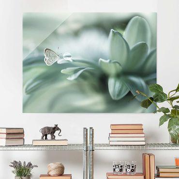 Quadro in vetro - Farfalla E Gocce di rugiada In Pastel Verde - Large 3:4