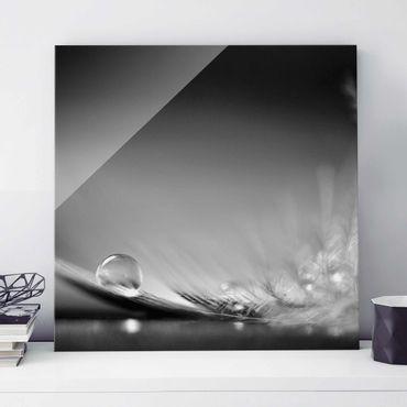 Quadro in vetro - Story of a Waterdrop Black White - Quadrato 1:1