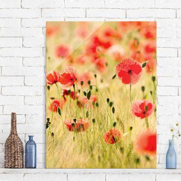 Quadro in vetro - Summer Poppies - Verticale 3:4
