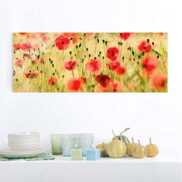 Quadro in vetro - Summer Poppies - Panoramico