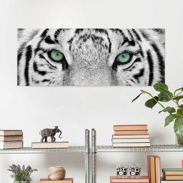 Quadro in vetro - White Tiger - Panoramico
