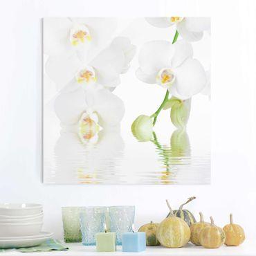 Quadro in vetro - Wellness Orchid - Quadrato 1:1