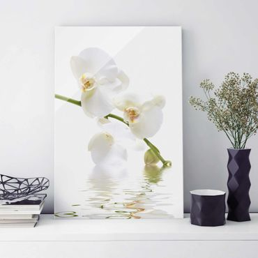 Quadro in vetro - White Orchid Waters - Verticale 2:3