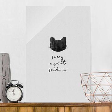 Quadro in vetro - Citazione animale Sorry My Cat Said No