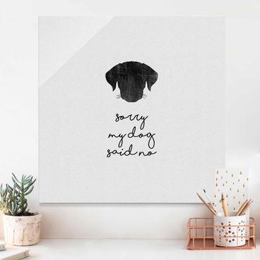 Quadro in vetro - Citazione animale Sorry My Dog Said No