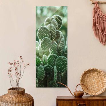 Quadro in vetro - Cactus